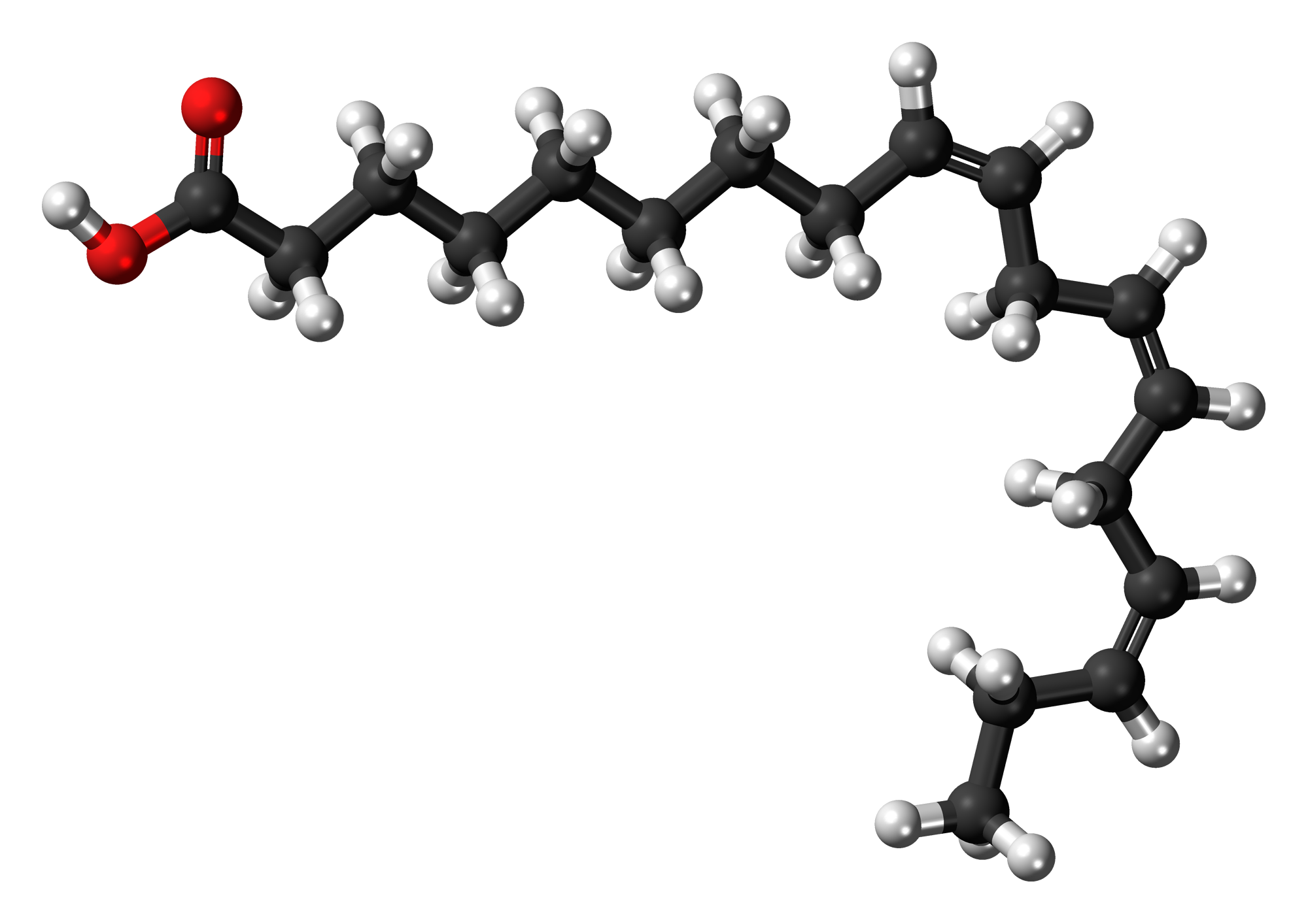 File:Alpha-Linolenic-acid-3D-balls.png - Wikimedia Commons