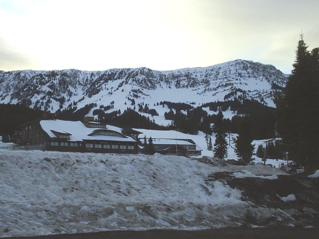 bridger bowl ski area - wikipedia