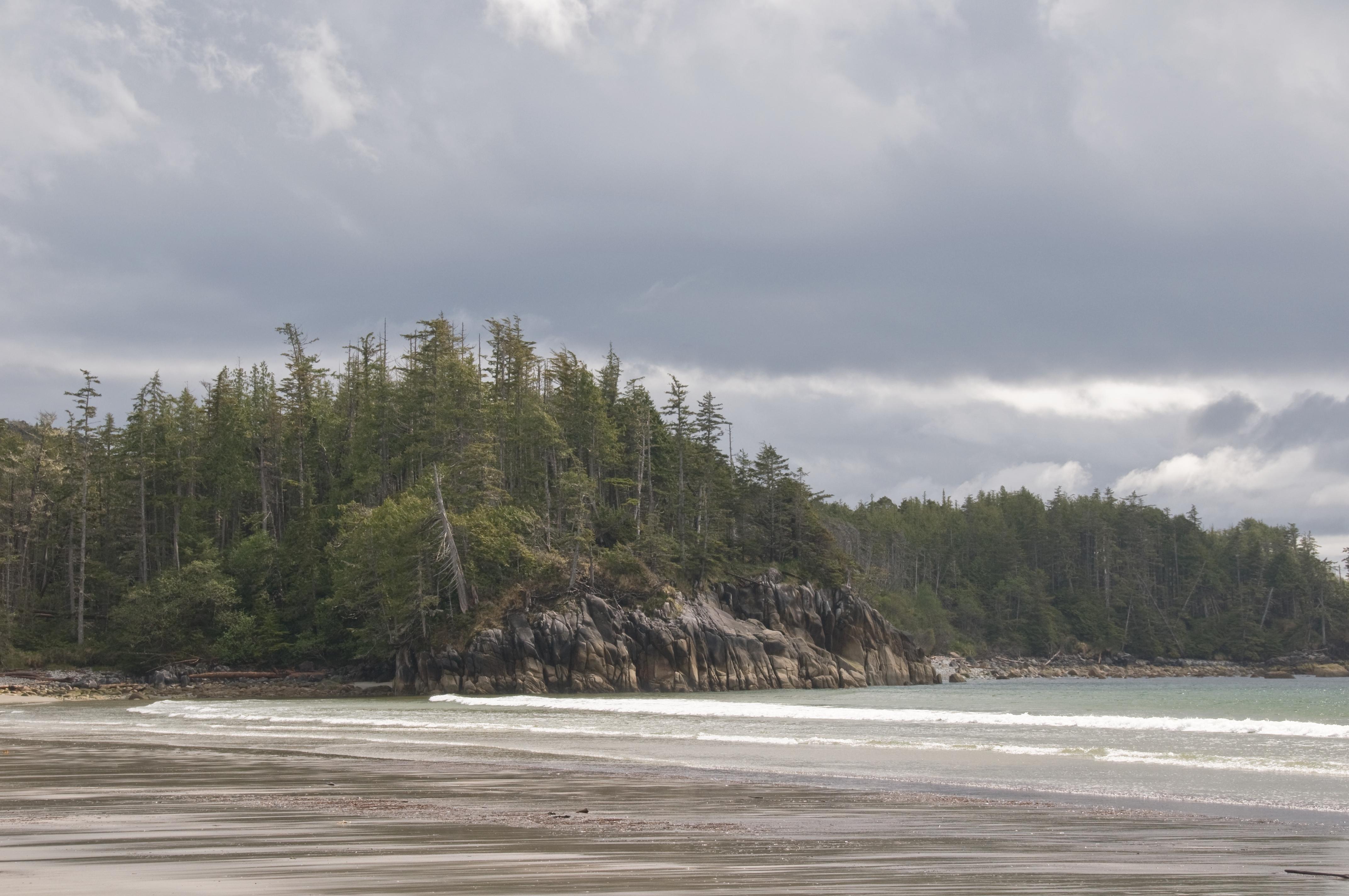 file calvert island bc beach     wikimedia commons