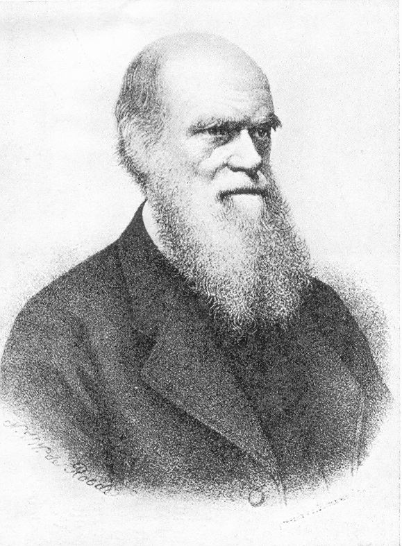 Charles Darwin S Prinicple Of Natural Selection