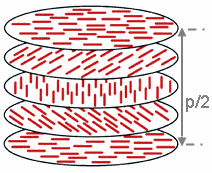 The image shows a rotation of the director about 180° in a cholesteric phase. The corresponding distance is the half-pitch, p/2.