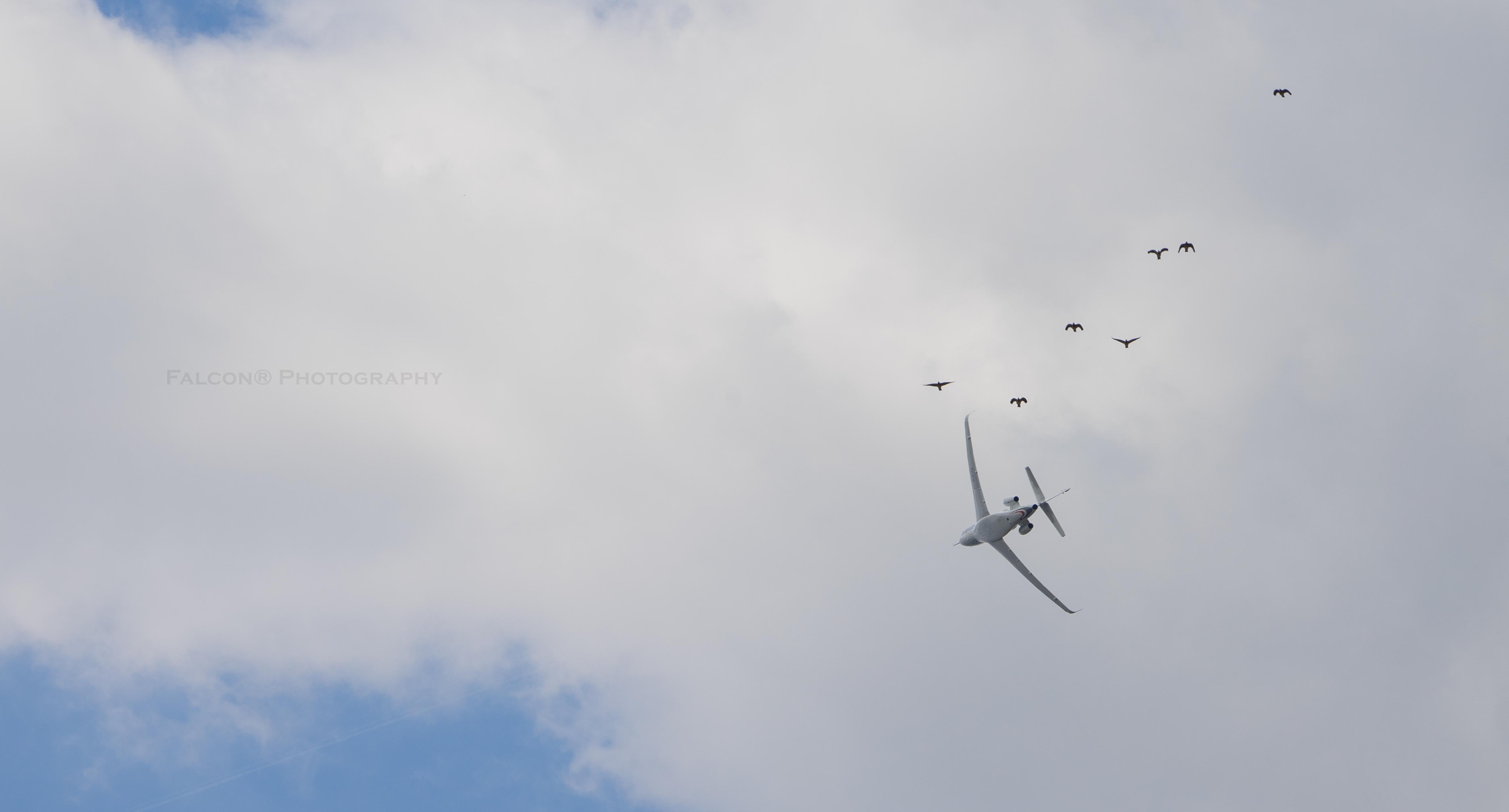 New Dassault Falcon URL 8X Air Show