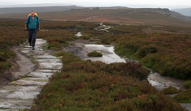 Footpath Along Derwent Edge - geograph.org.uk - 590486