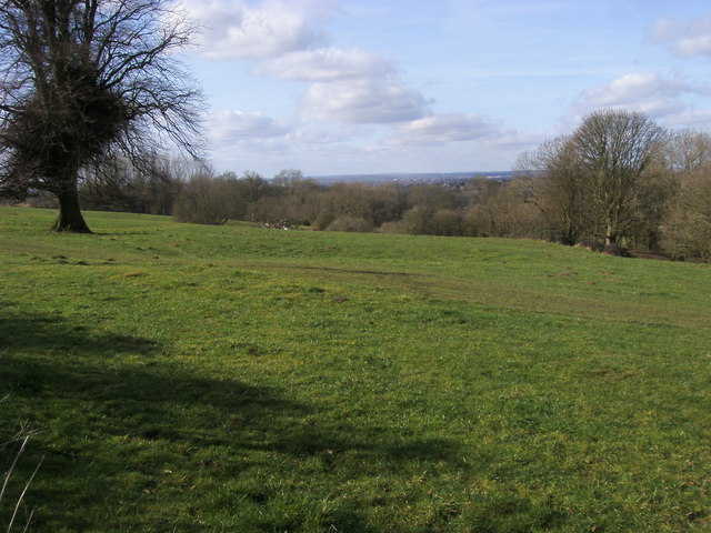 File:Footpath across The Common - geograph.org.uk - 1172742.jpg