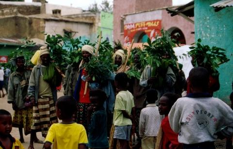 Photograph of a rain dance being performed in Harar, Ethiopia Harar Dance.jpg