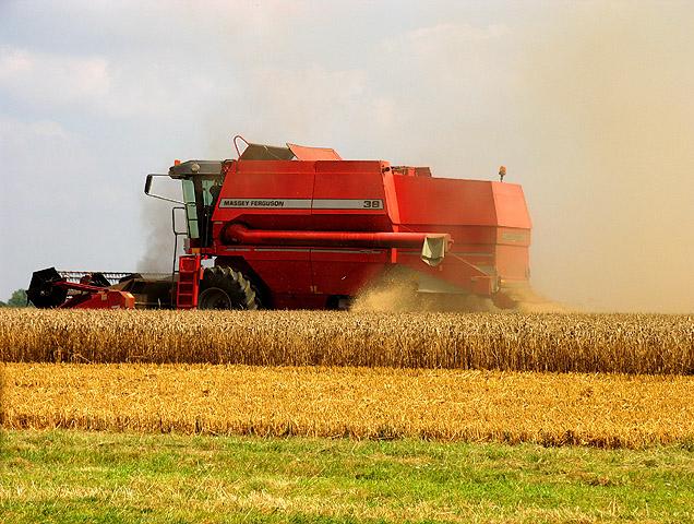 File:Harvesting on Hazelhanger Farm - geograph.org.uk - 39229.jpg