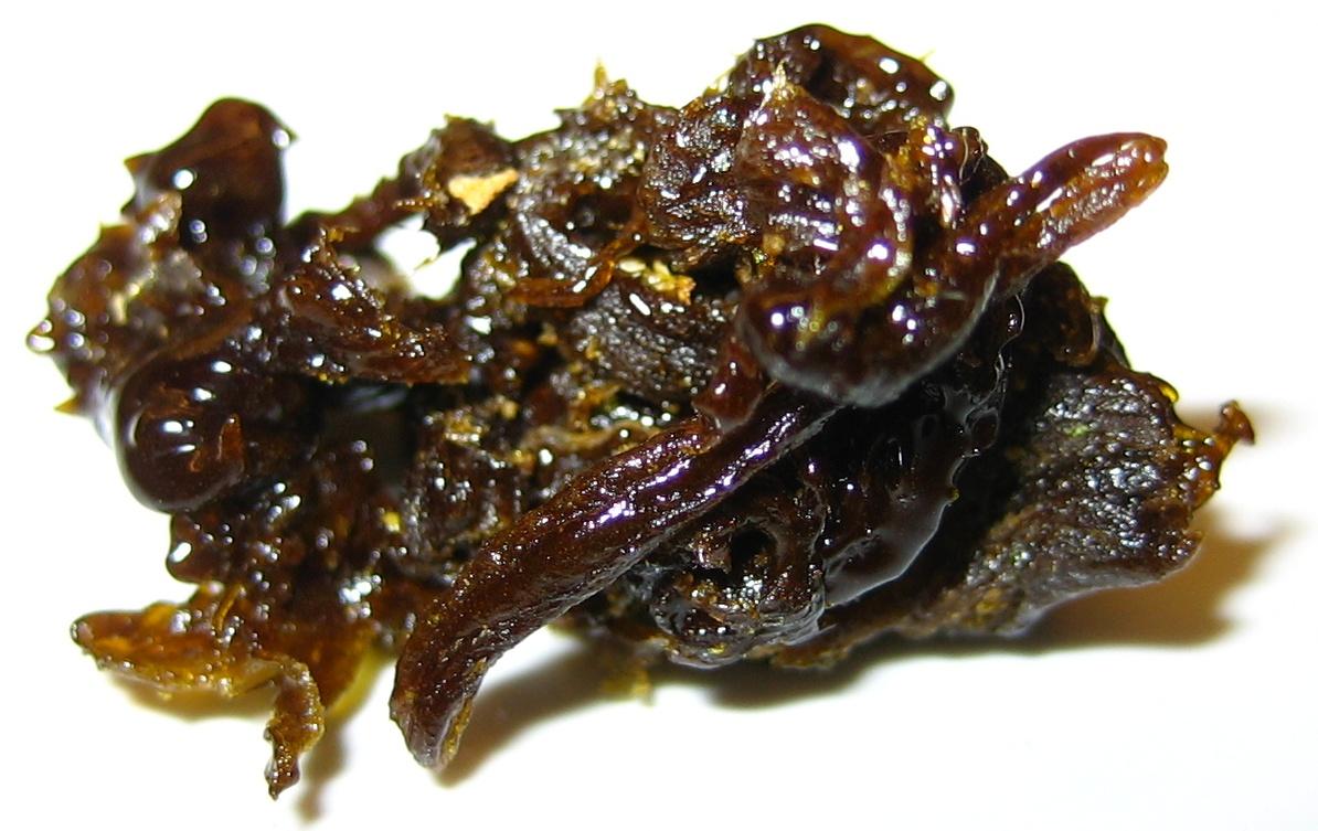 jelly thc