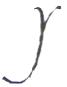 Henry Stuart Handwriting sample y.png