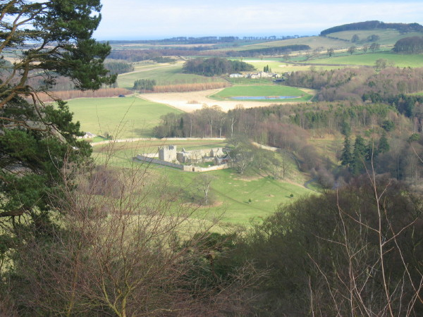 Hulne Priory from Brizlee Tower, Hulne Park, Alnwick - geograph.org.uk - 122704