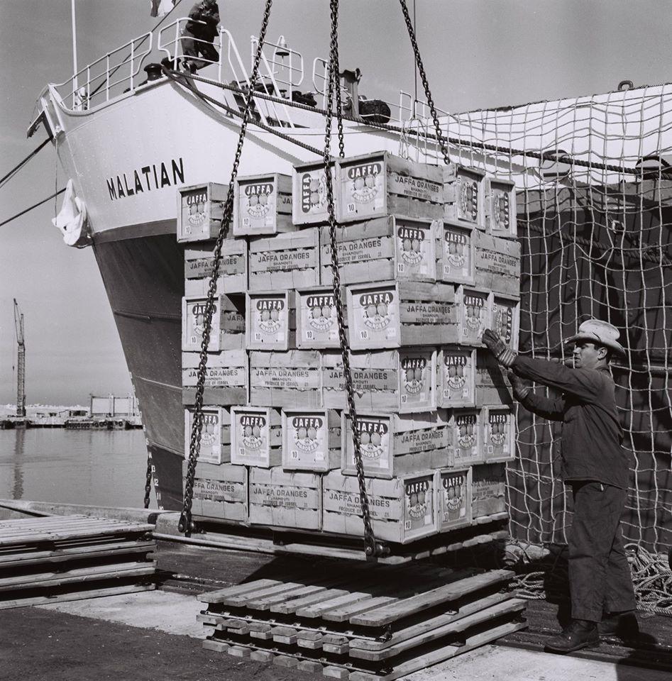 Jaffa Orange Loading at Ashdod Port 1965 b.jpg