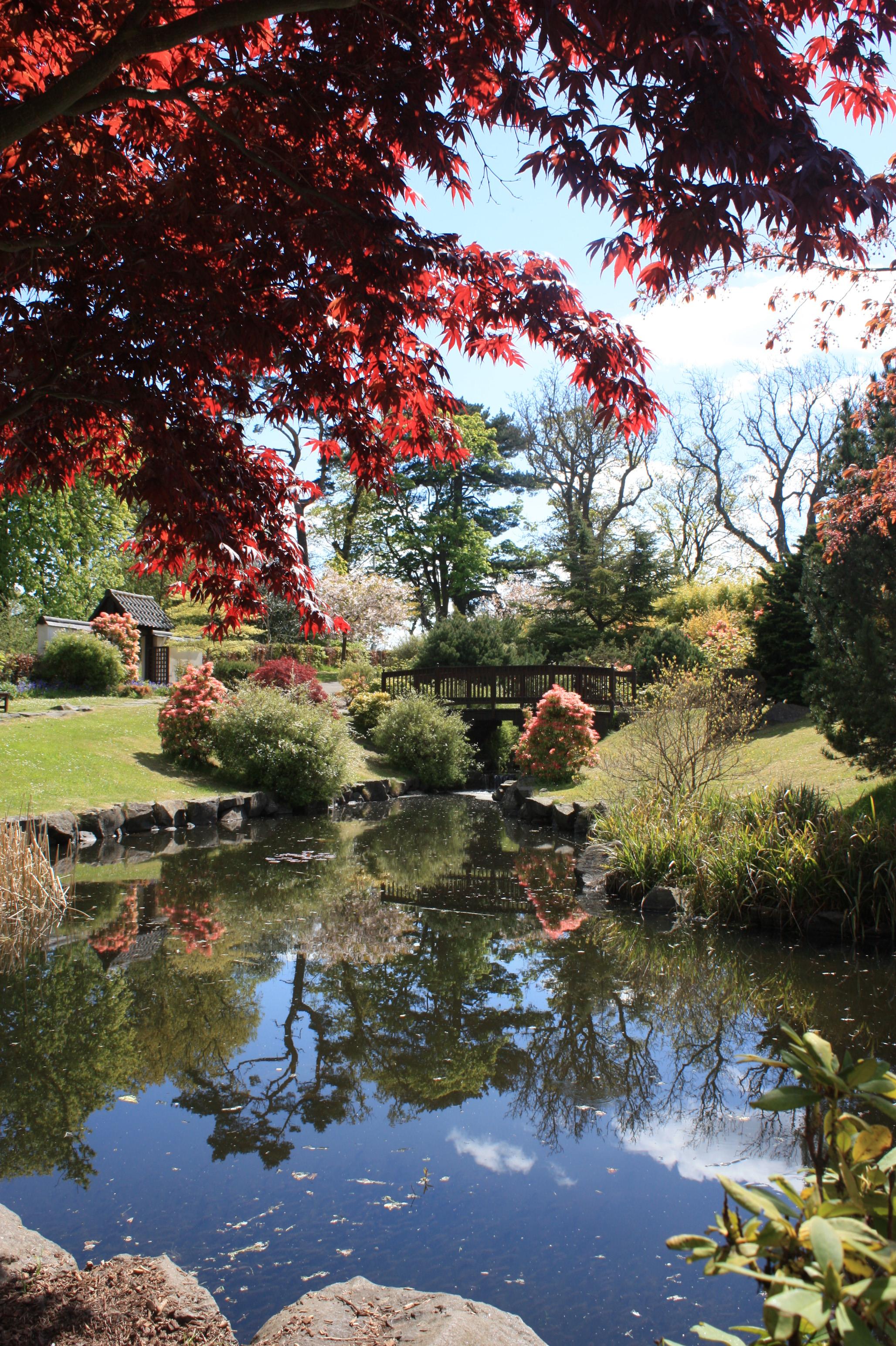 File:Japanese Garden At Lauriston Castle, Edinburgh.JPG