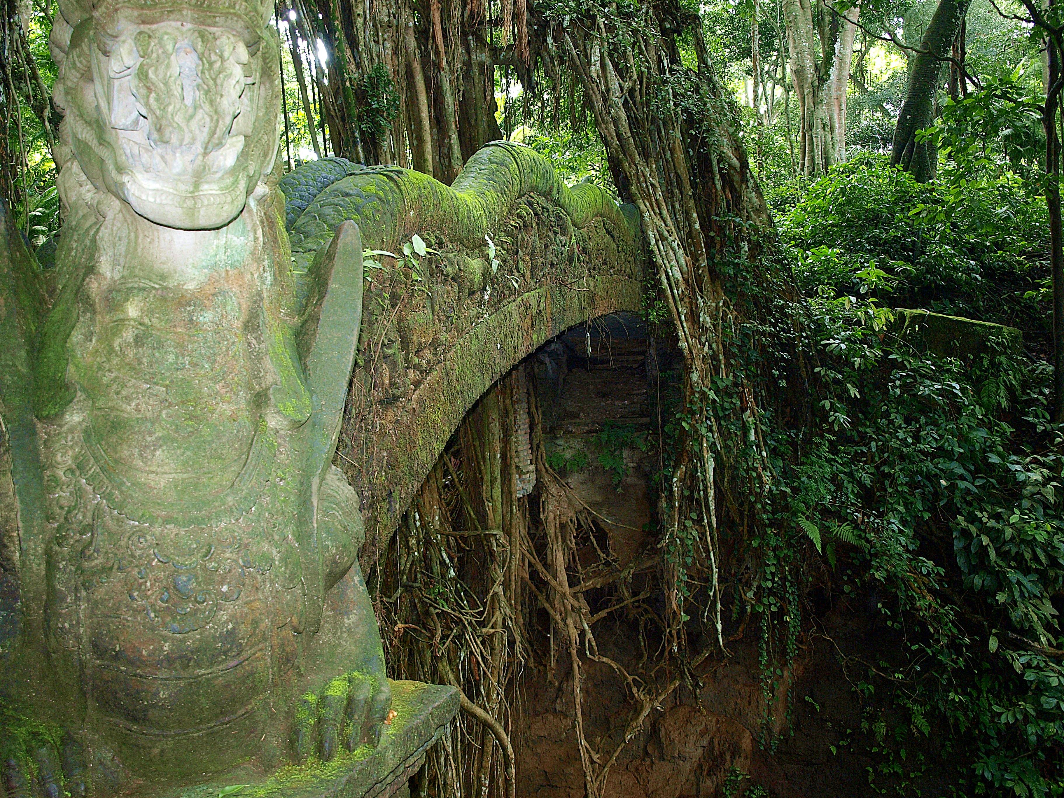 file monkey forest  ubud  bali  indonesia 01 jpg