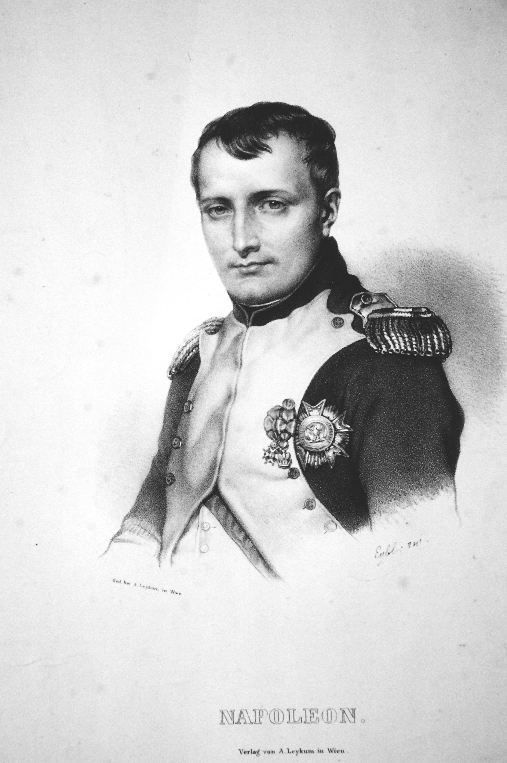 napoleon essays