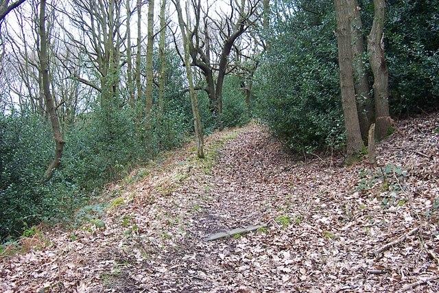 Public Footpath to Park Nook, through Elland Park Wood - geograph.org.uk - 701430