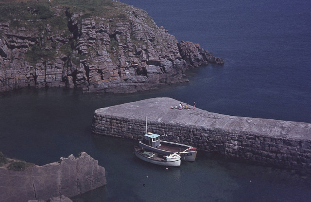 Stackpole Quay - geograph.org.uk - 1053359