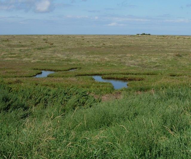 Stiffkey Marshes - geograph.org.uk - 952432