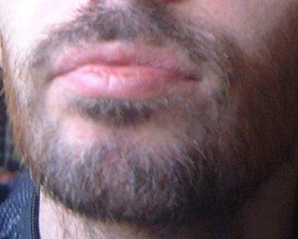File:Swedish beard.jpg