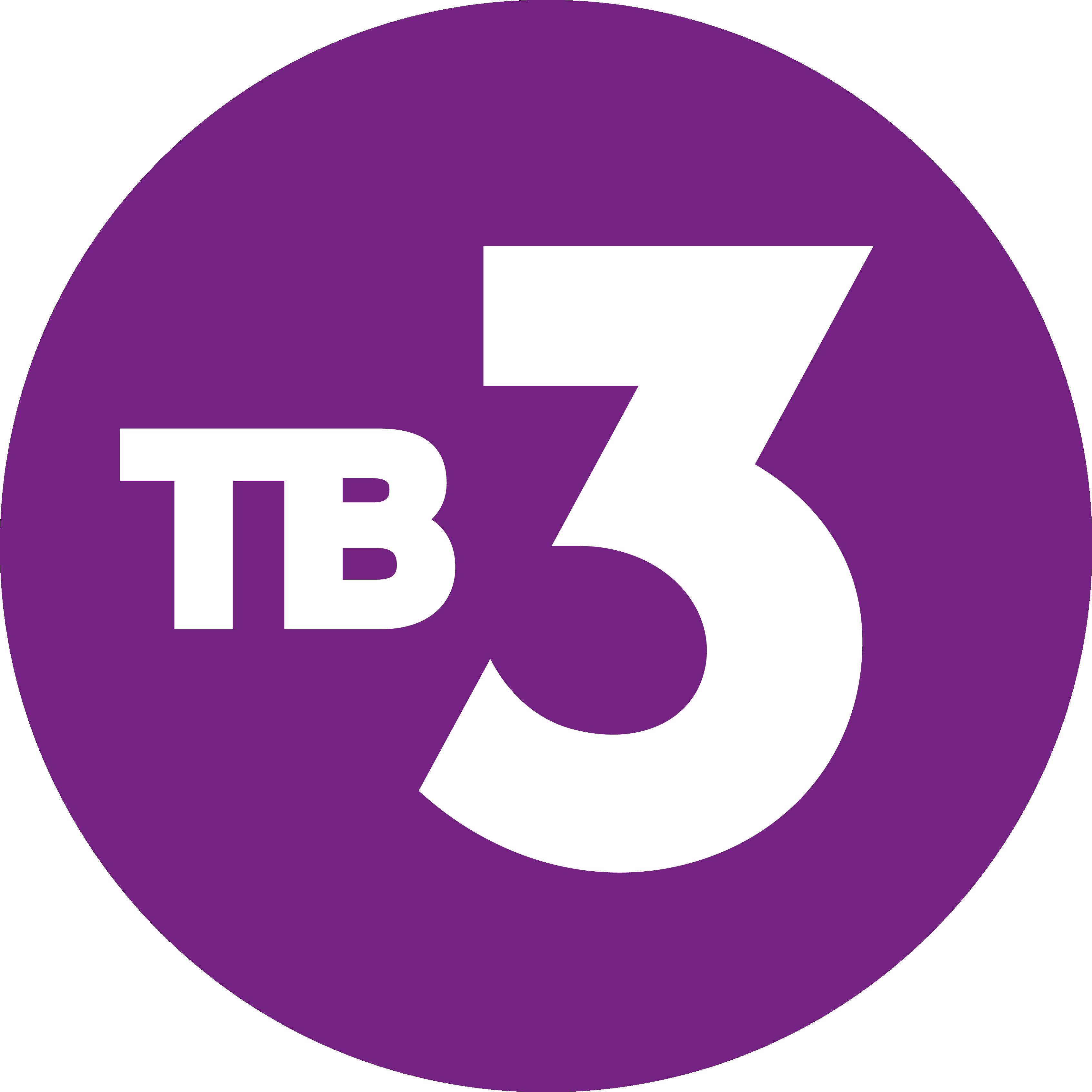 filetv3 logo 2015png