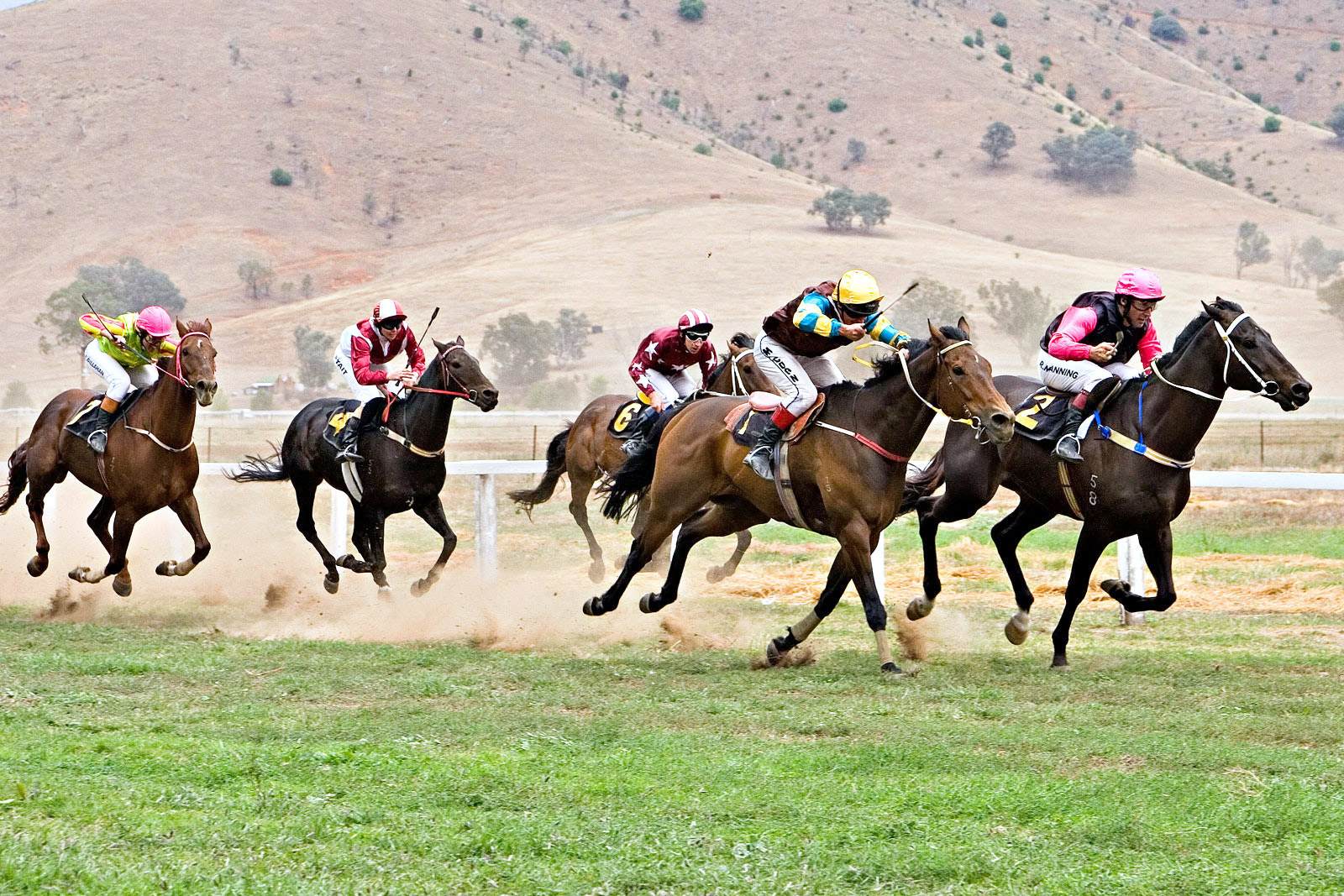 File:Tambo valley races 2006 edit.jpg  Wikipedia