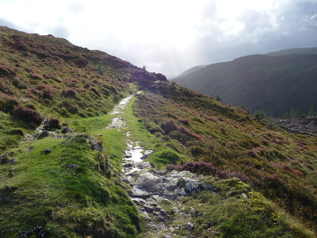 The start of the Precipice Walk proper on Foel Cynwch - geograph.org.uk - 1520688