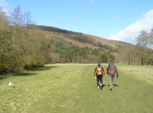 Walking by Lindop Wood - geograph.org.uk - 1051478