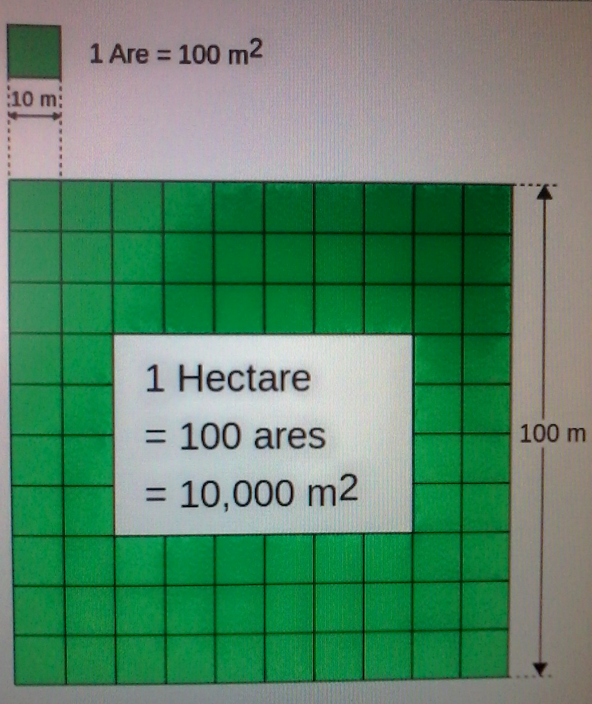 Скільки квадратних метрів в гектарі