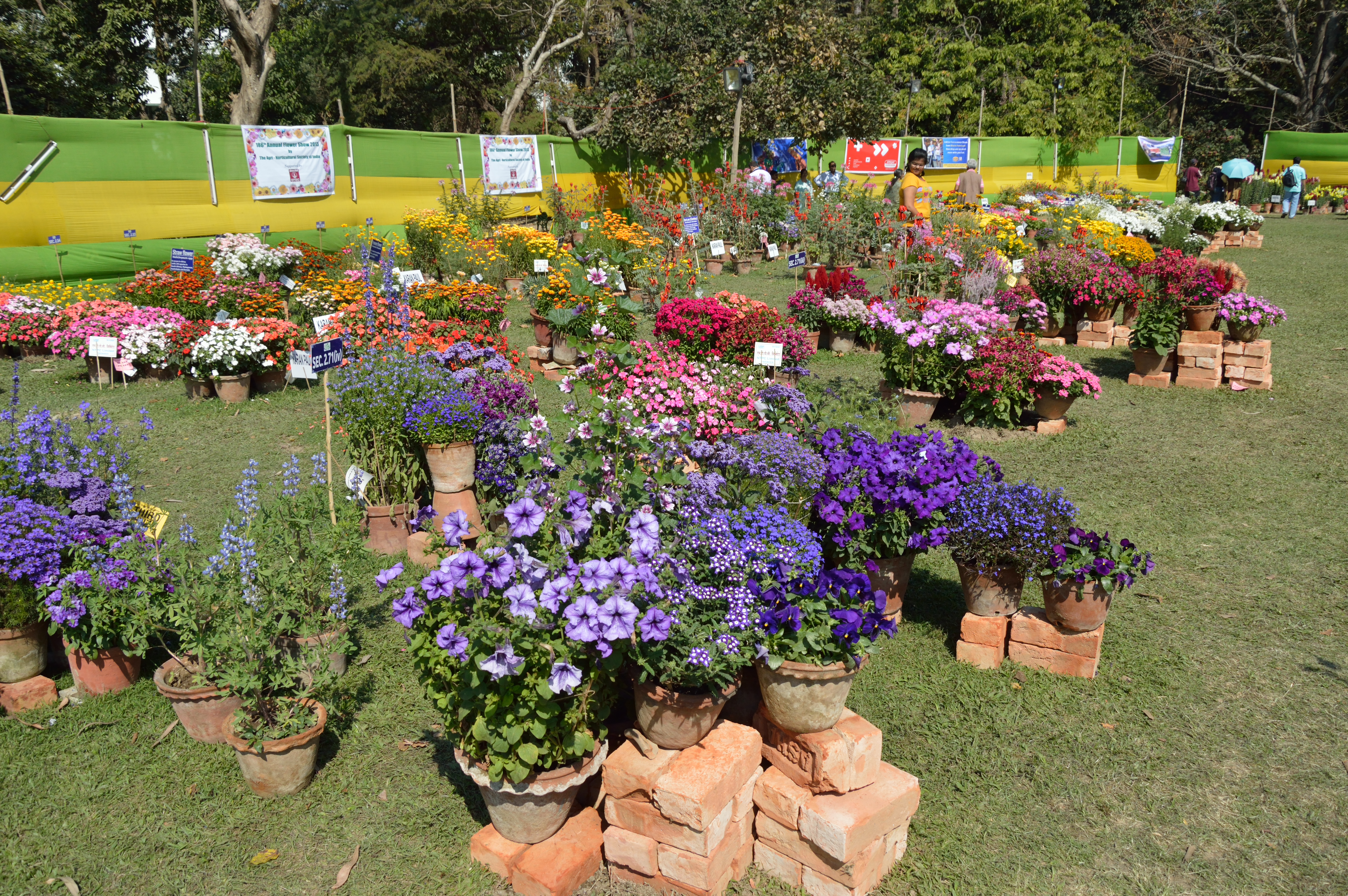 Fileannual flower show agri horticultural society of india fileannual flower show agri horticultural society of india alipore kolkata izmirmasajfo