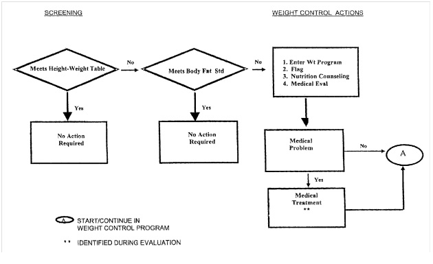 Work Flow Chart Template: Army Weight Control screening flowchart.jpg - Wikimedia Commons,Chart