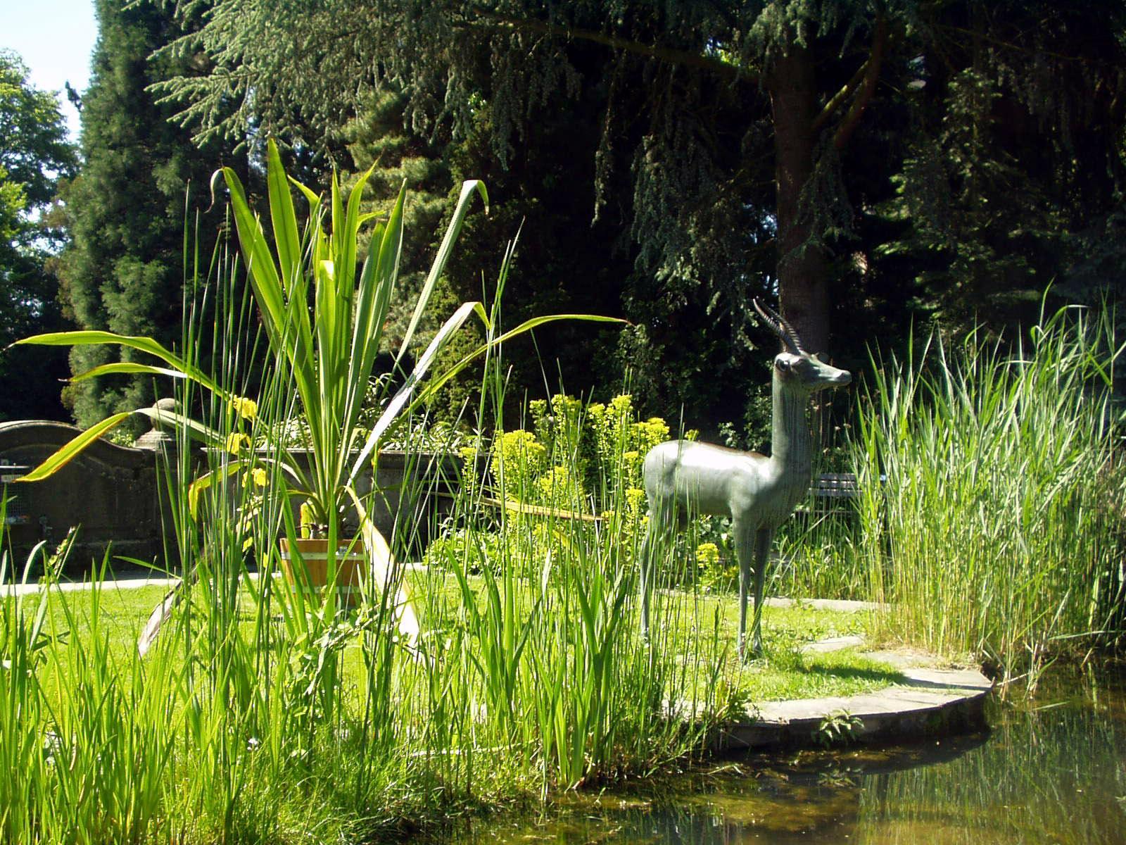 Botanischer Garten Gießen - Wikipedia