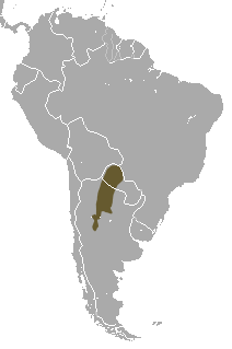 Chacoan Naked-tailed Armadillo area.png