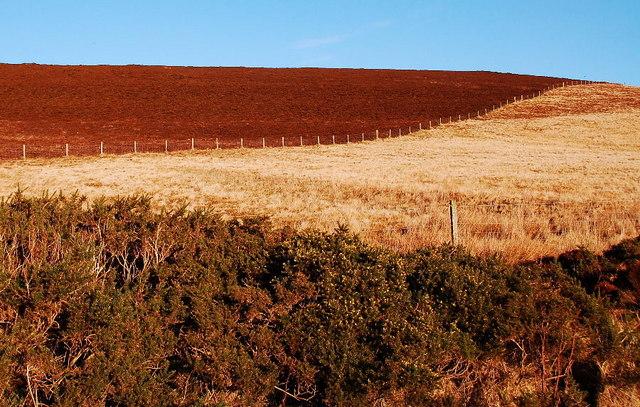 File:Changing landuse - geograph.org.uk - 1137810.jpg