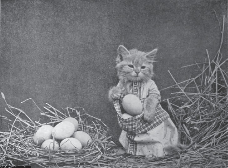 File:Harry Whittier Frees - Mrs. Bufkins Finds Plenty of Eggs.jpg