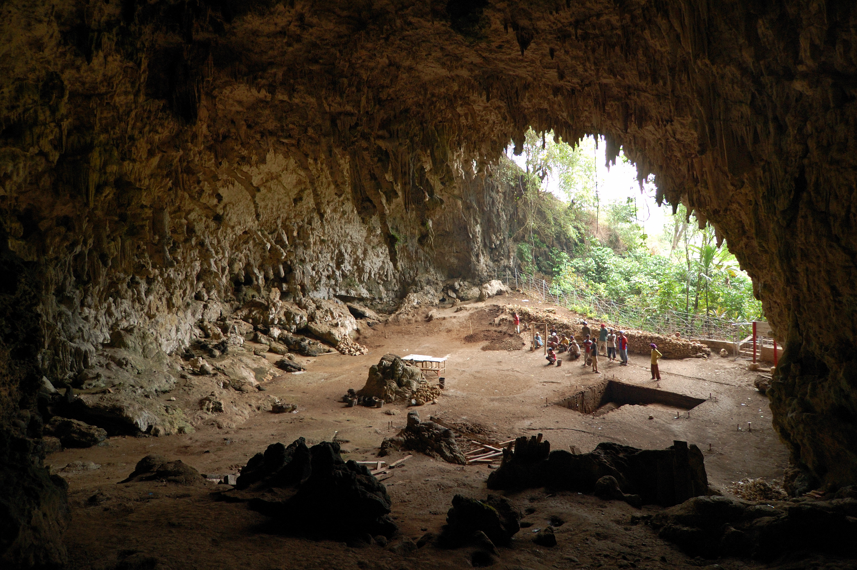http://upload.wikimedia.org/wikipedia/commons/d/d3/Homo_floresiensis_cave.jpg