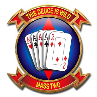 MASS2-LOGO SMALL.jpg
