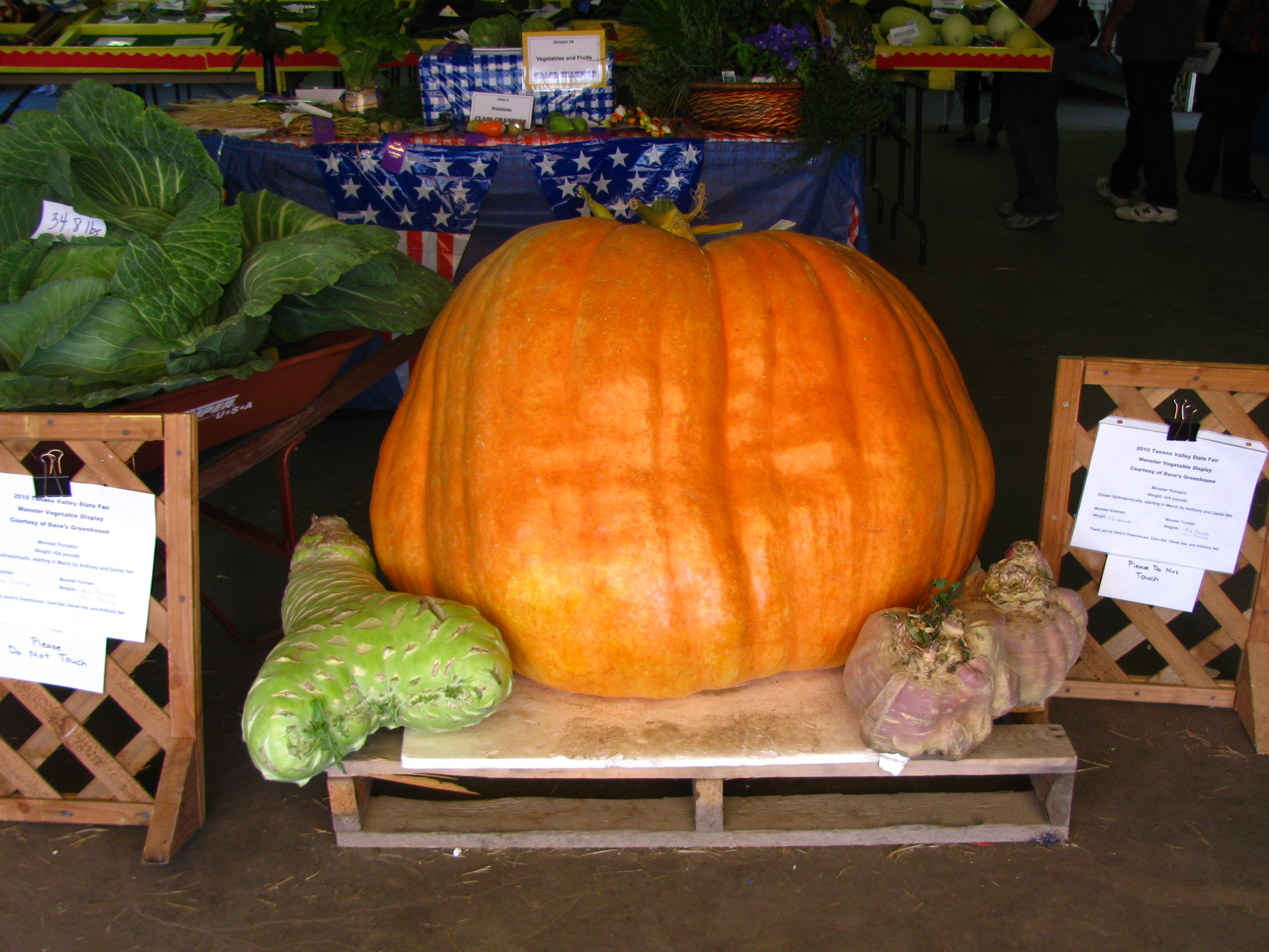 Monster vegetable display at the Tanana Valley State Fair 2010.jpg