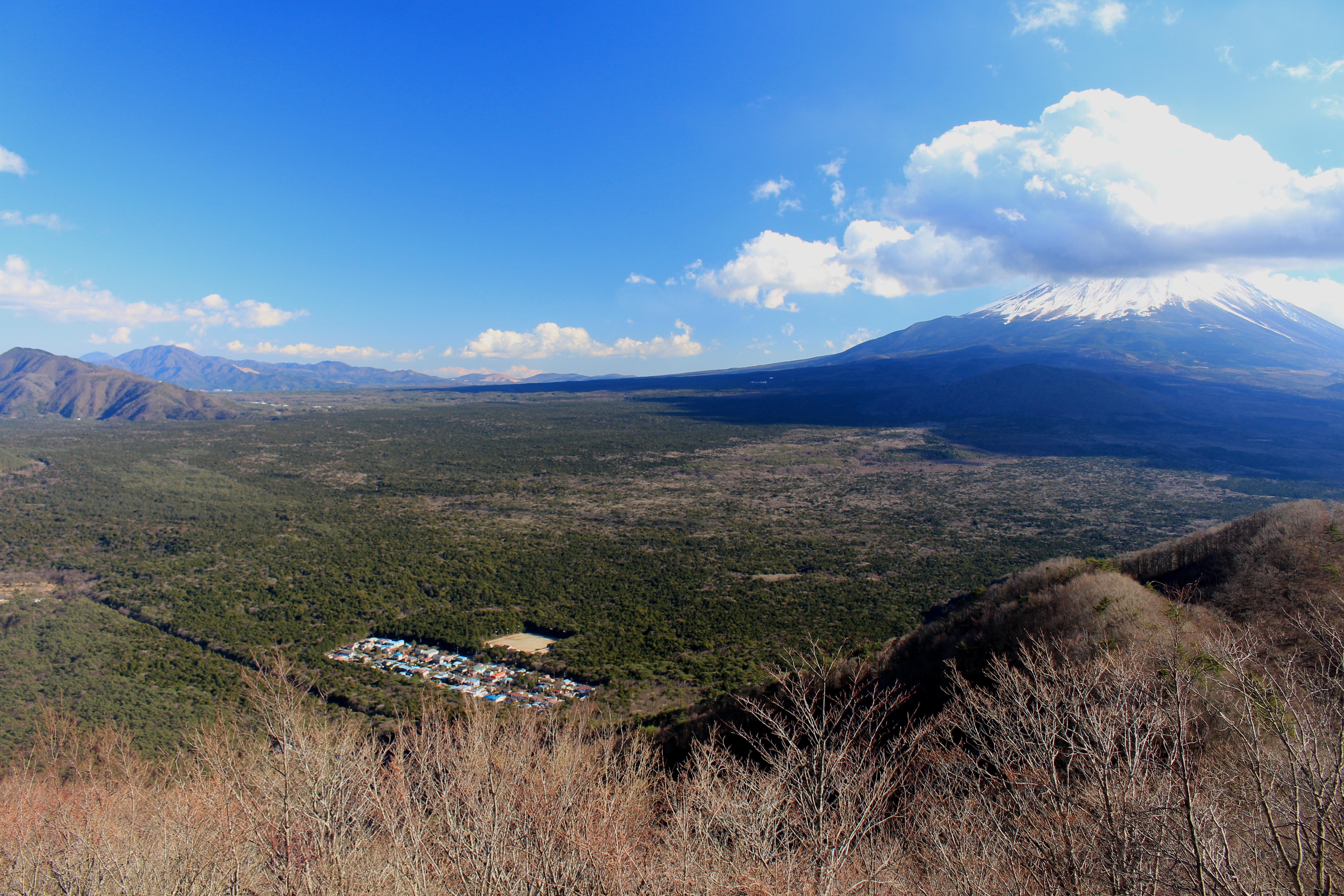 村 樹海 富士 の