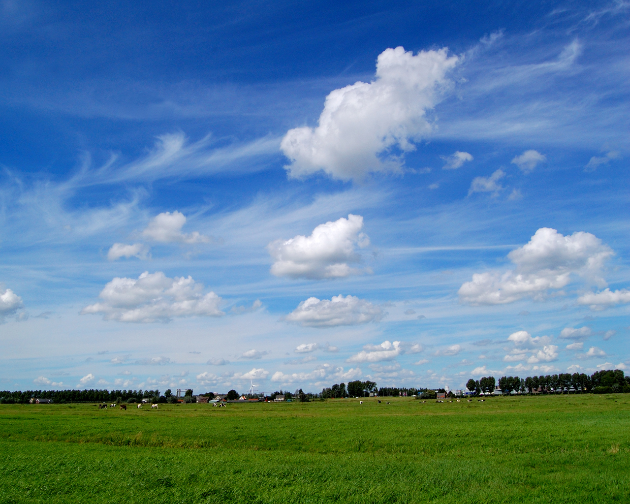 Het laagste punt van Nederland is de Zuidplaspolder
