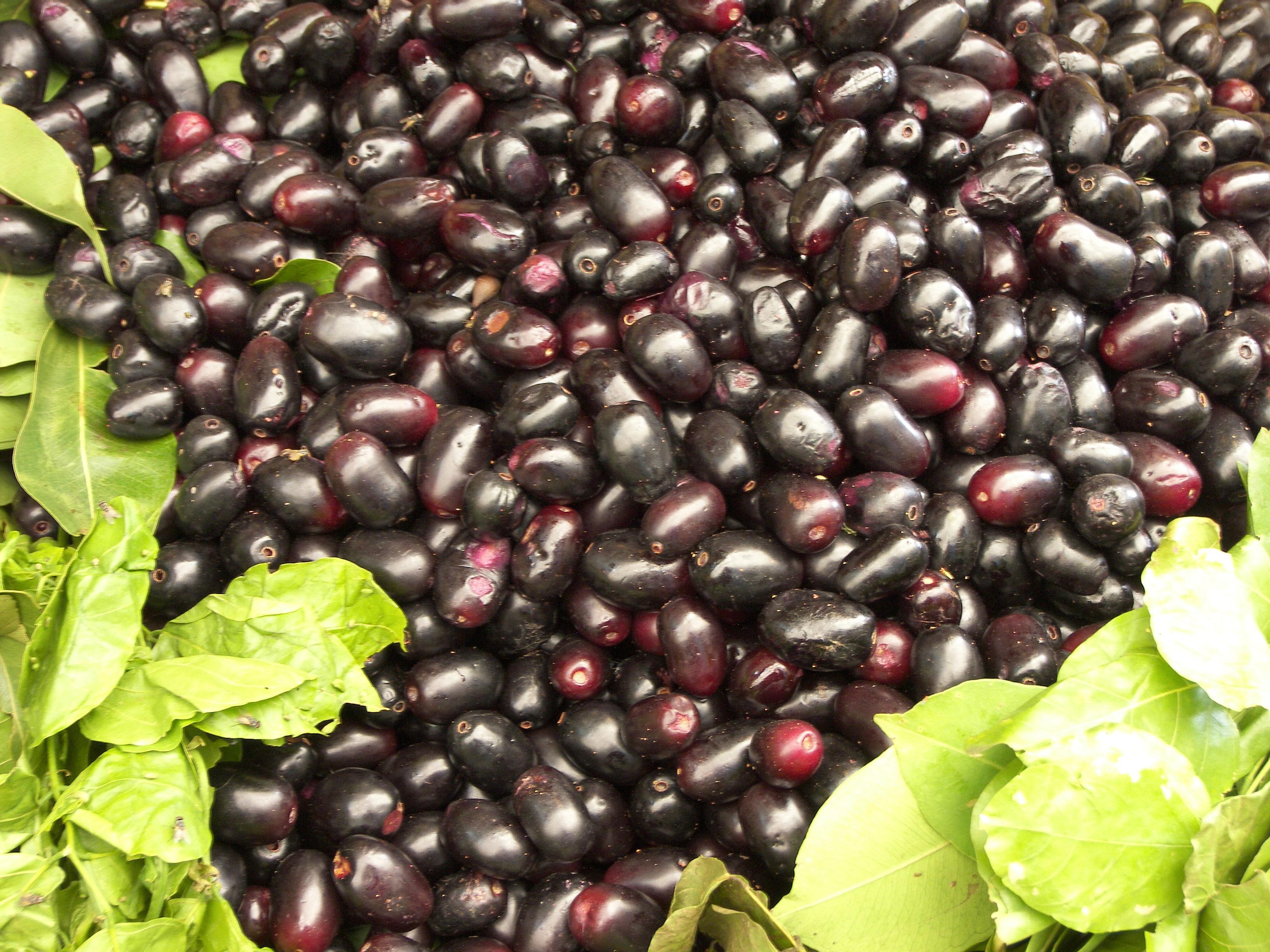 File:Ripe jamun fruits.jpg - Wikimedia Commons