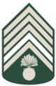 Segundo-Sargento.png