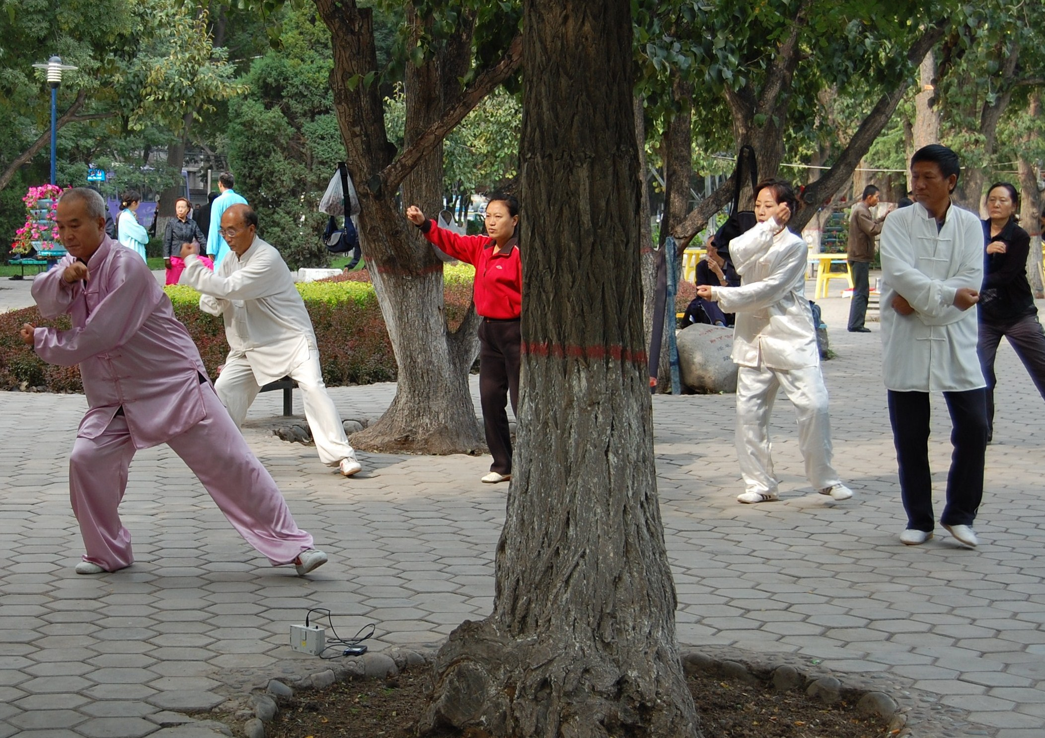 Taijiquan-Lanzhou.JPG