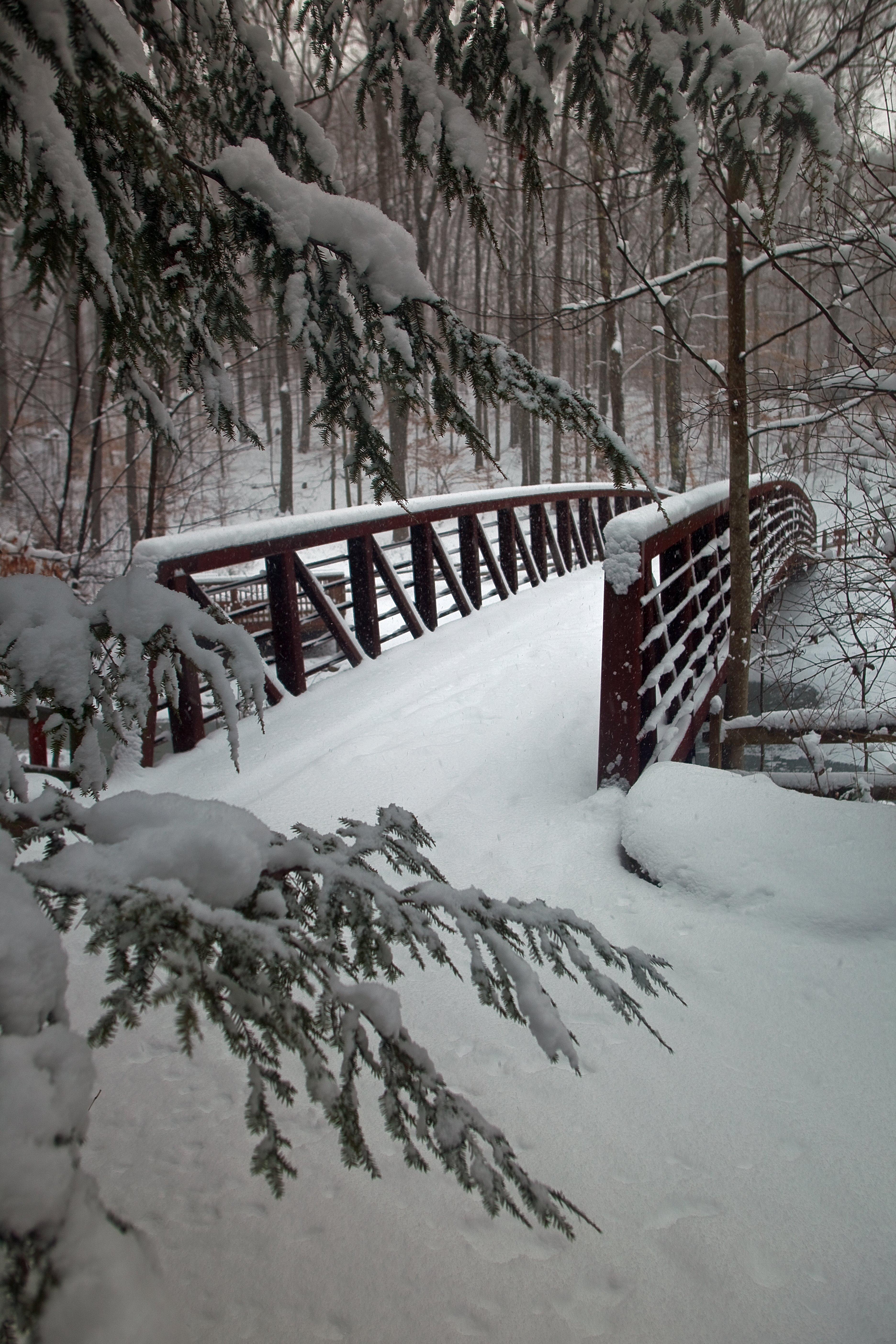 Image Result For Snow Winter God