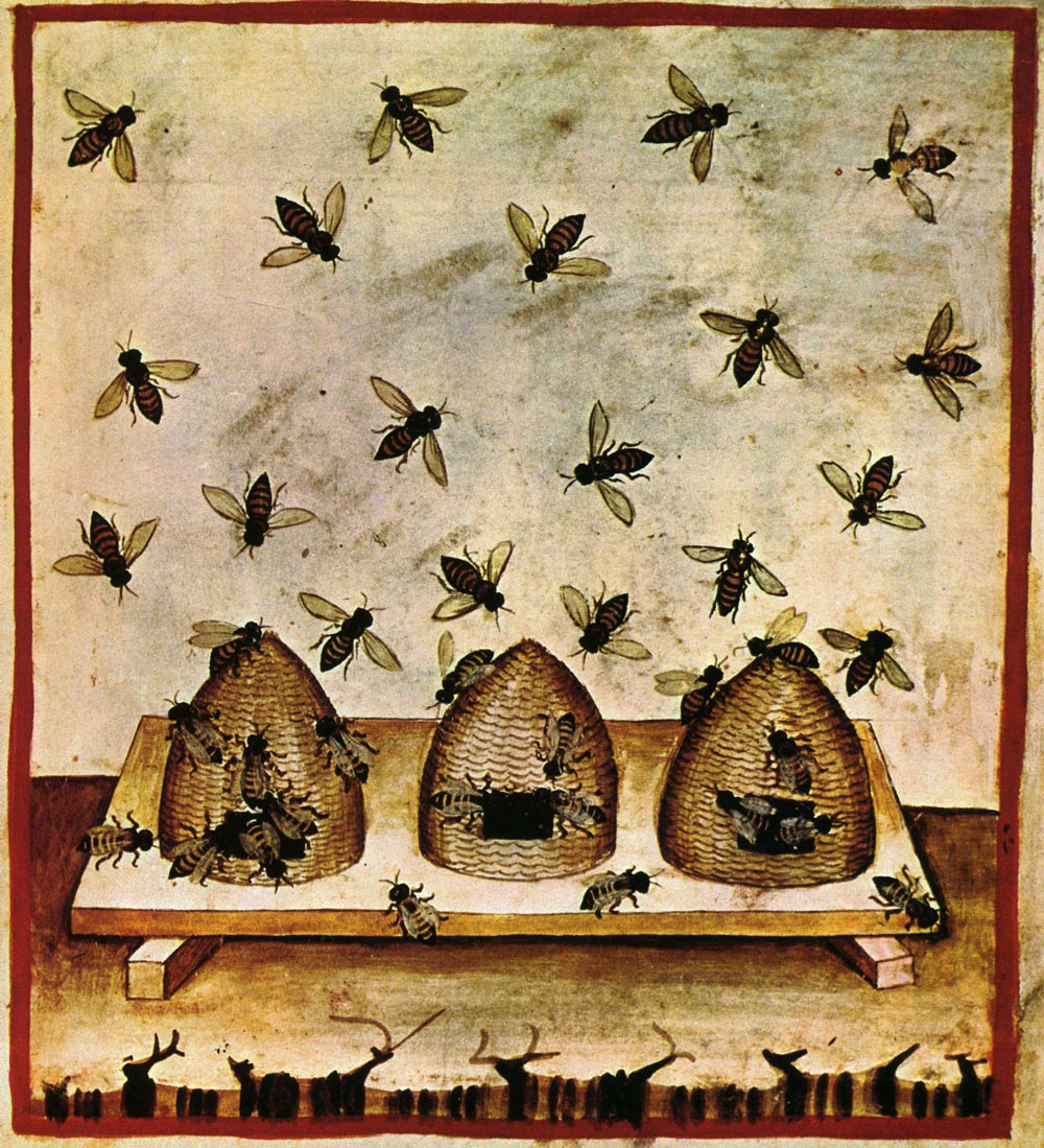 27-alimenti, miele, Taccuino Sanitatis, Casanatense 4182..jpg