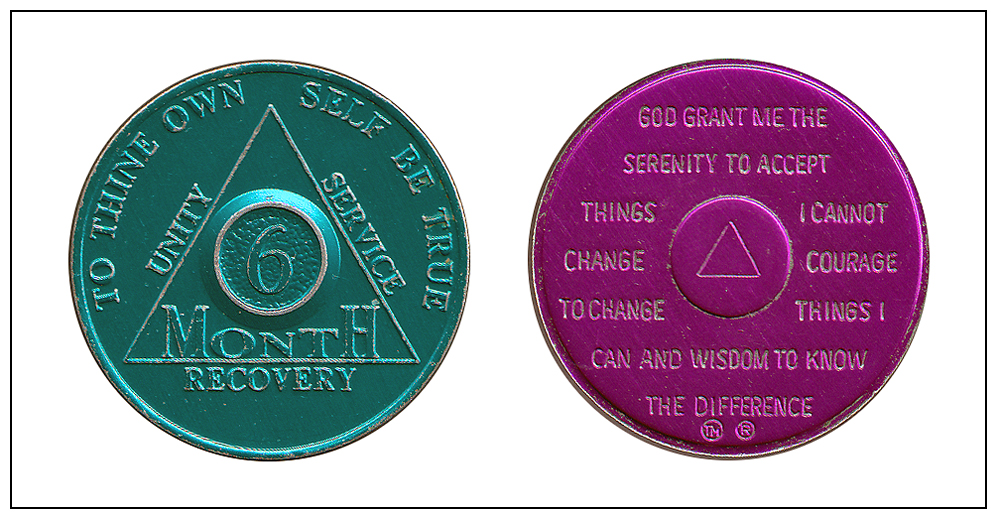 9 Year AA Medallion Red Gold Plated Alcoholics Anonymous Sobriety Chip Coin IX