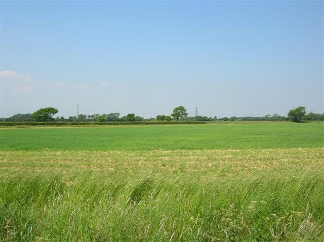 File:Between Moor Monkton and Hessay - geograph.org.uk - 184514.jpg