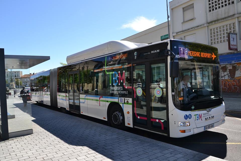 Horaires Des Bus Cannes Villa Domergue