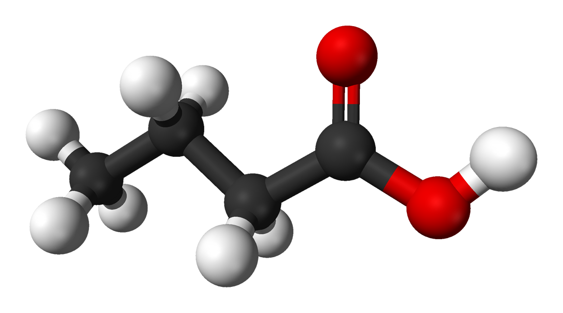 File:Butyric-acid-3D-balls.png - Wikipedia, the free encyclopedia