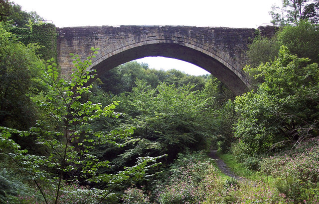 Causey Arch - geograph.org.uk - 334483