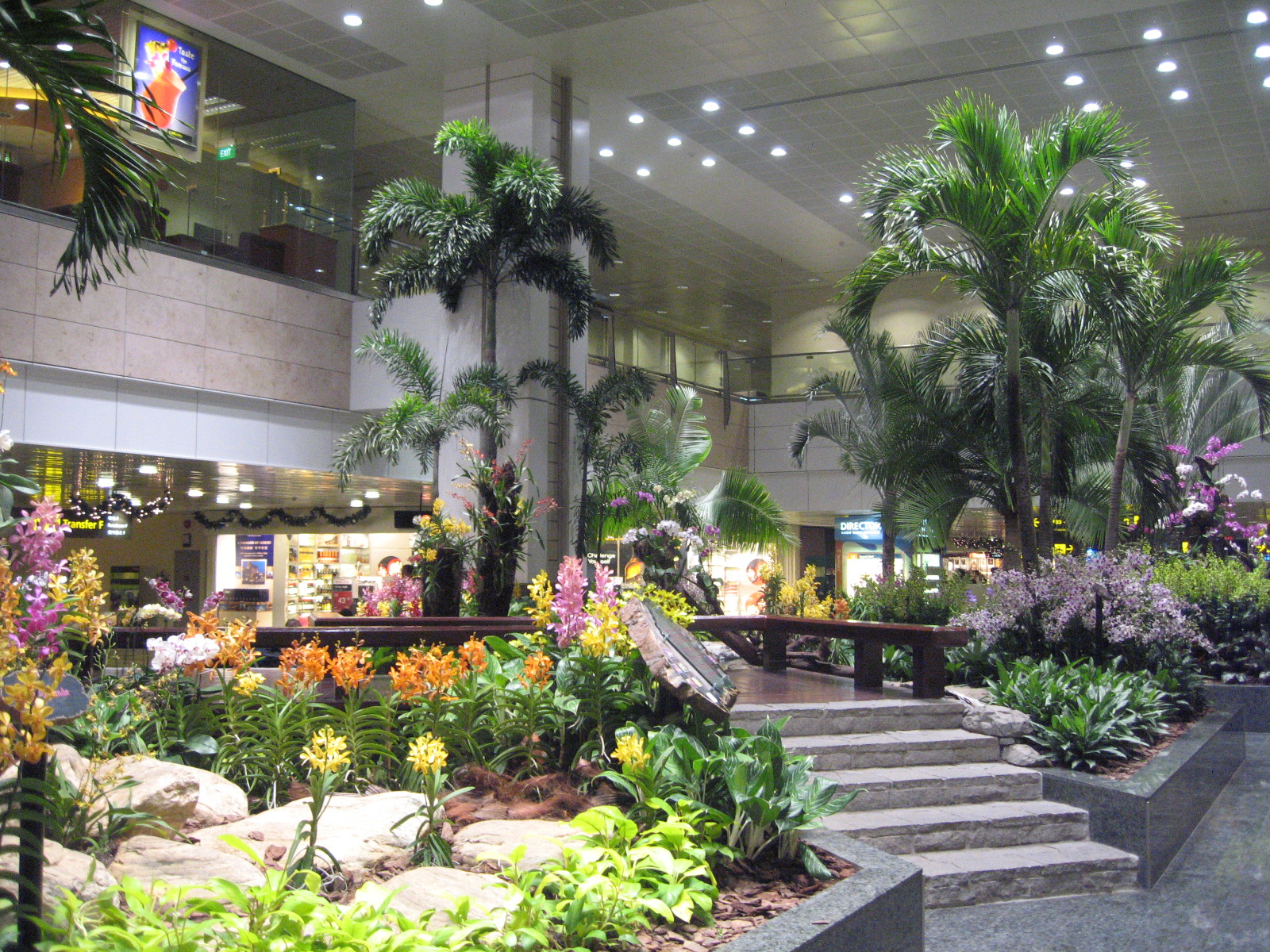 File changi airport terminal 2 restricted area 9 jpg for Indoor gardening singapore