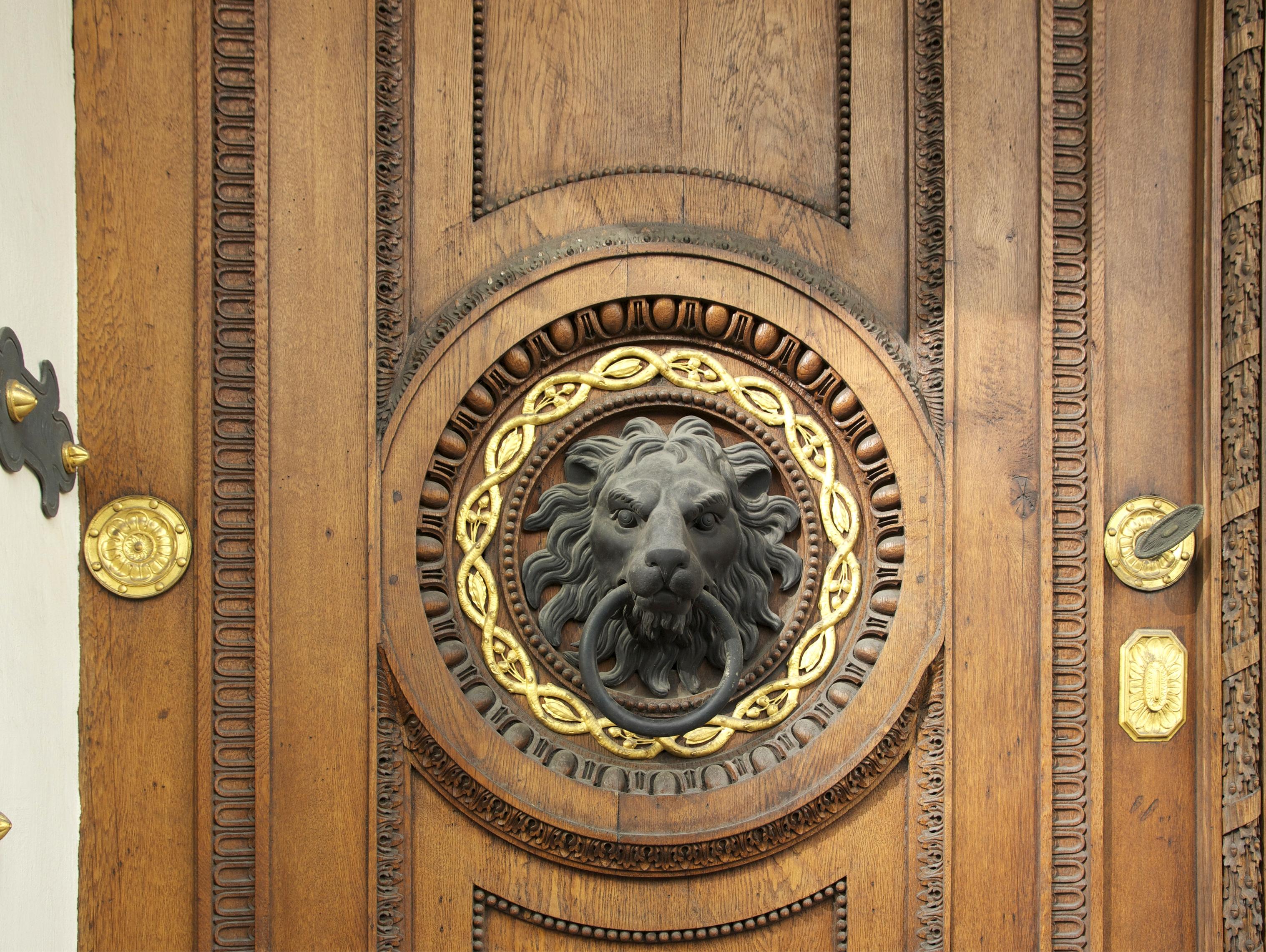 File:Detail lion head wooden door Vienna.jpg - Wikimedia Commons on
