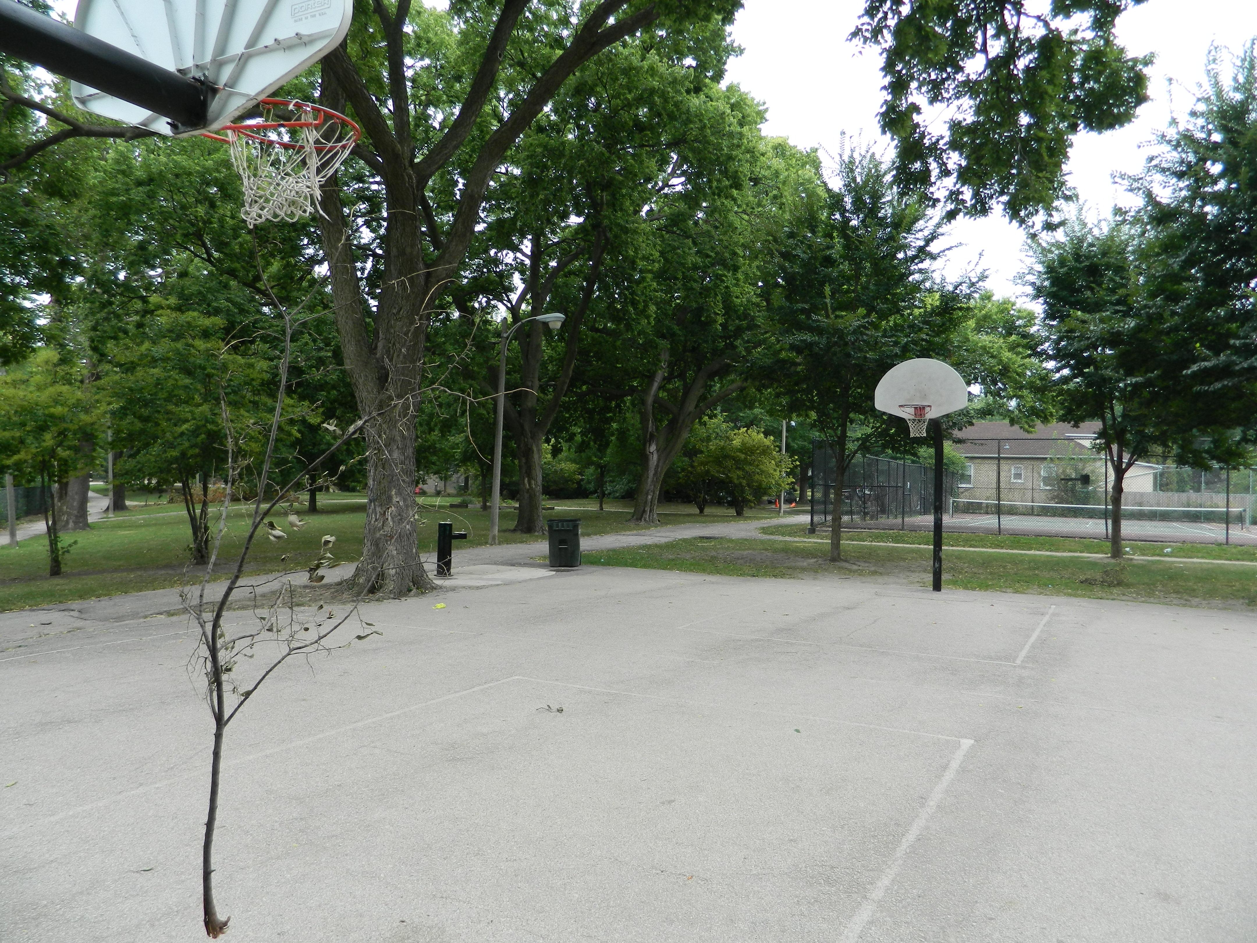 Eugene Park Net Worth